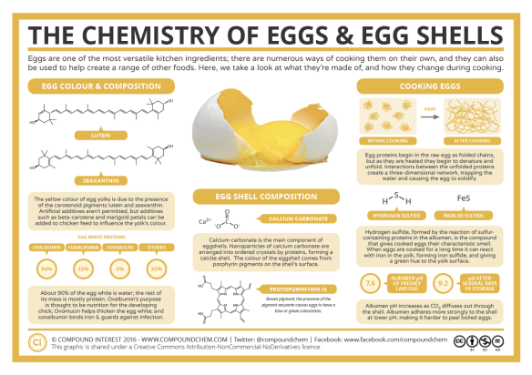 The-Chemistry-of-Eggs-Eggshells